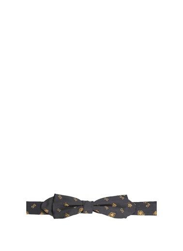 Dolce&Gabbana Papyon Lacivert